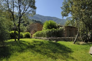 location villas corse
